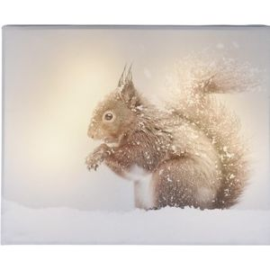 LED Obraz na plátne Animal and snow Squirrel, 20 x 25 cm